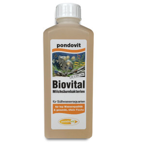 Milchsäurebakterien Biovital - 250 ml