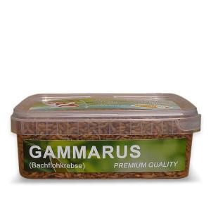 Gammarus (Bachflohkrebse) 1200 ml