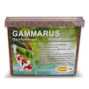 Gammarus (Bachflohkrebse)  2400 ml