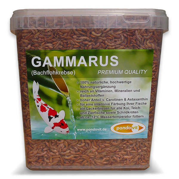 Gammarus (Bachflohkrebse)  5000 ml