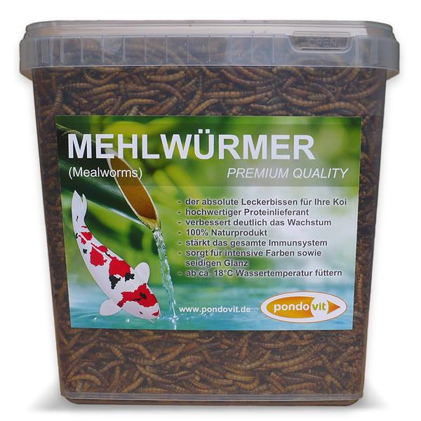 Mehlwürmer 5000 ml