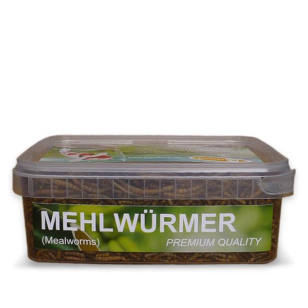 Mehlwürmer 1200 ml