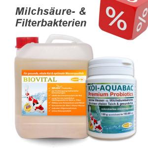 Set1 - Biovital 2500 ml + Koi-Aquabac 150 g